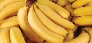 Banana: Source of Good Health | Benefits and Disadvantages of Banana