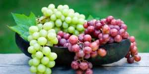 Grapes: A Healthy Fruit | Benefits and Disadvantages of Grapes
