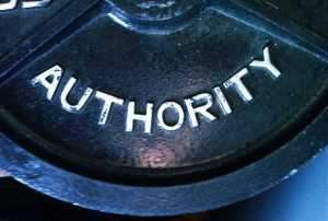 How to Be an Authority Figure in World of Business